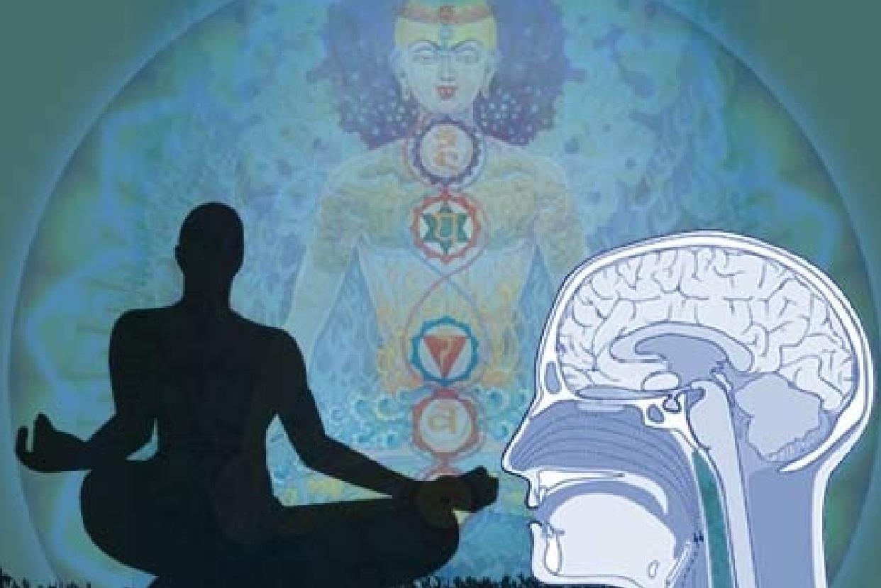 картинка йога мозга сущности это обычный