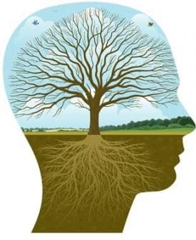 psychotherapy tree of life